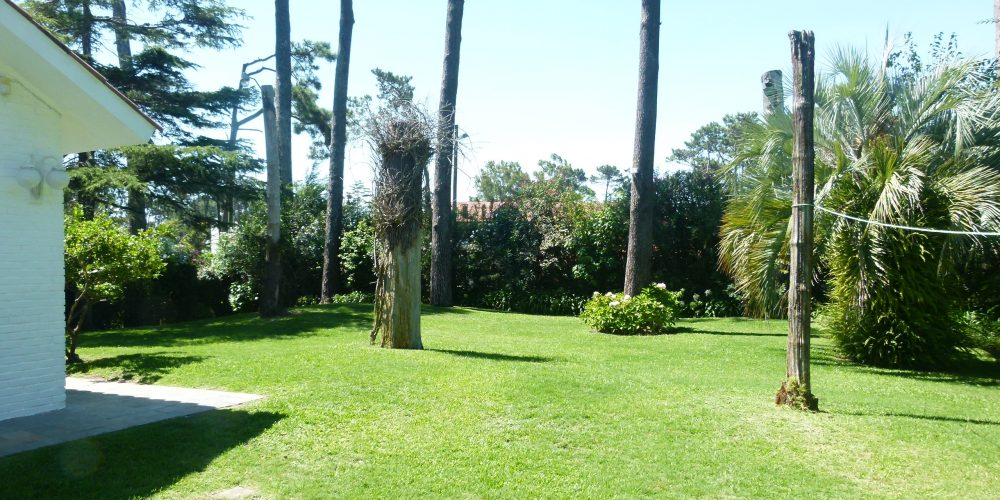 23 Punta del Este Investments zona country